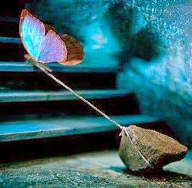 tethered butterfly